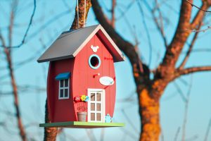 birdhouse, birds, tree